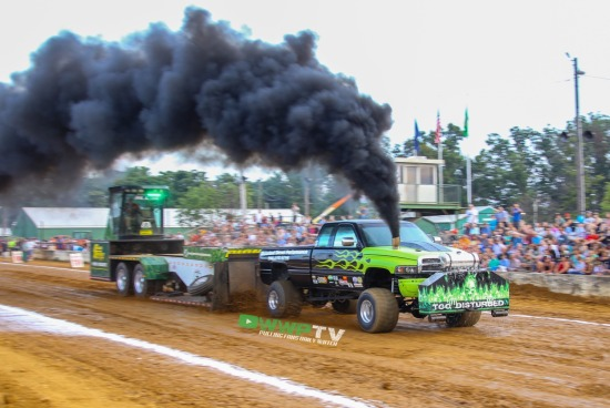 Berryville Pullers Shine at the Clarke County Fair